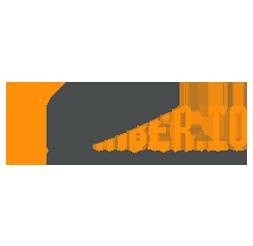 1numberio-brand-logo